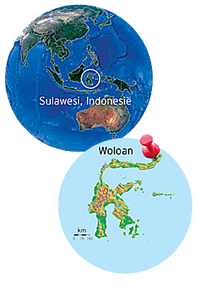 viae vitae Woloan